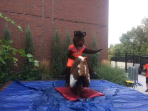 Image of Buster Bronco on Mechanical Bull