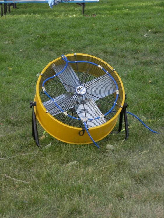 Fan (Large)